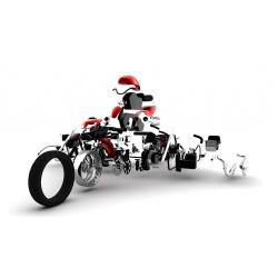 Pièce SAV R&G RACING Vis percée de protection de fourche pour 446832